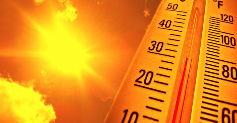 Photo of Survive a Heat Wave with These Cool Tips