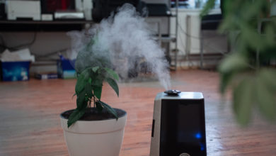 Photo of Difference Between Humidifier and Purifier