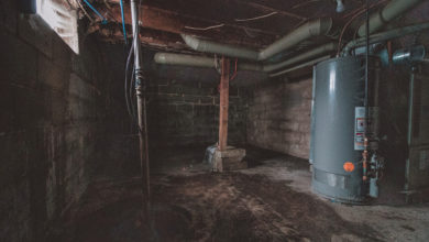 Photo of Basement Humidity and Dehumidifying It: What You Need to Know